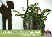 24 month rental special